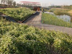 Shanghai Houtan Park by Turenscape   HomeDSGN