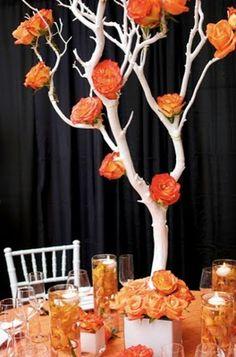 Roses on manzanita tree