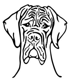 Dog Genetics Illustration Tweed Harlequin Merle By