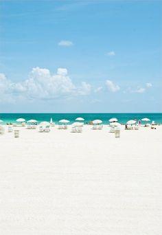 Beach life,  Florida