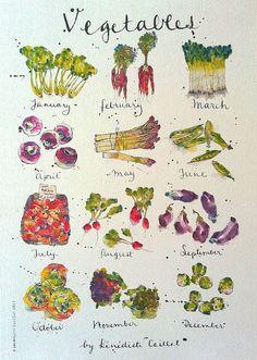 Vegetables (Benedicte Caillat)