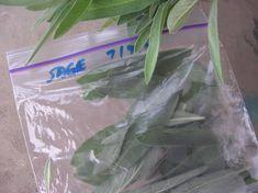 Freezing Herbs--Basil, Rosemary, Thyme, Oregano, Cilantro, Parsley