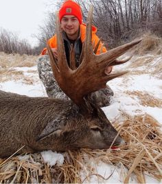 Massive Whitetail Buck
