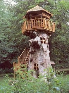 wow... hollow out a huge stump, carve out windows, put a topper on, and you have a rapunzel tower tree house!