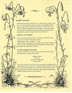 Book of Shadows Spell Pages ** Wiccan Weight Loss Spells ** Wicca Witchcraft BOS FOR SALE • $6.49 • See Photos! Money Back Guarantee. This is the page of Wiccan Weight Loss Spells for your Book of Shadows. Great way to use The Power to lose some weight. Please note: I combine shipping!!! Please 231752568436