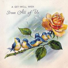 All information about Vintage Bluebird Of Happiness Tattoo. Pictures of Vintage Bluebird Of Happiness Tattoo and many more. Vintage Greeting Cards, Vintage Postcards, Vintage Pictures, Vintage Images, Bird Shoulder Tattoos, Bluebird Tattoo, Tattoo Bird, Tattoo Guys, Get Well Cards