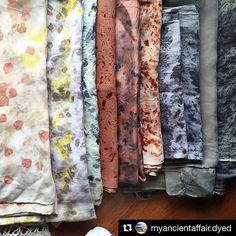 #Repost @myancientaffair.dyed ・・・ Afuera mal tiempo pero dentro me calientan estos maravillosos colores que me ha  donado la naturaleza 🌳🌸🌿Bufandas tintadas a mano con plantas, verduras ,raíces y amor 💛 #myancientaffairdyed #flora #nature #naturelover #style #barcelona #eco #stylenotfashion #bundledye #clothes #happy #veggies  #upcycle #plantpower #igers  #dye #sustainable  #local #handmade #food #cotton #nochemicals #silk #picoftheday  #slowfashion  #handdyed  #beauty…