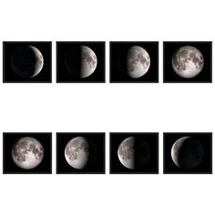 Phases Of The Moon Prints ($2,950) ❤ liked on Polyvore featuring home, home decor, wall art, black, prints, moon wall art, framed wall art, black home decor, moon home decor and black framed wall art