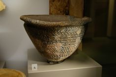 Wiltshire Museum-display case presenting finds from West Kennet Long Barrow-Peterborough Ware bowl