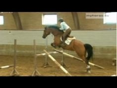 Jumping Exercise No. 1