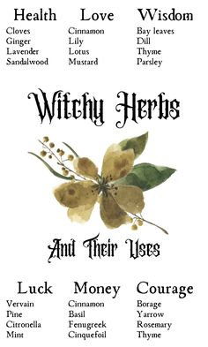 Green Witchcraft, Magick Spells, Wicca Witchcraft, Wiccan Spell Book, Wiccan Witch, Witch Herbs, Herbal Magic, Magic Herbs, Witchcraft For Beginners