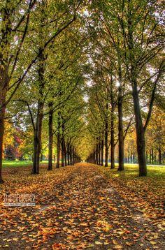 Hannover - Georgengarten © https://www.facebook.com/TCGib