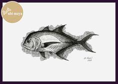 """""""XARÉU (Carax hippos Carangidae)"""". Técnica: bico de pena s/ papel C à grain 180g/m², tamanho 21X29,7cm"""