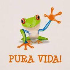 Découvrez les Plantes médicinales indigènes du Costa Rica. - Ulule