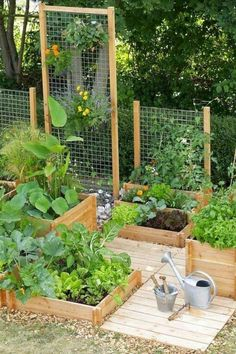 Best Photos Raised Garden Beds tomatoes Ideas Guaranteed, that is a strange headline. Although certainly, while When i first built our raised garden beds We. Backyard Planters, Backyard Vegetable Gardens, Vegetable Garden Design, Small Backyard Landscaping, Outdoor Gardens, Landscaping Ideas, Garden Ideas For Backyard, Easy Garden, Back Yard Gardens