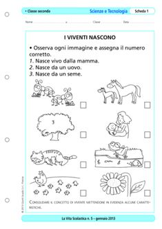 Viventi e non viventi - La Vita Scolastica Elementary Schools, Worksheets, Bullet Journal, Science, Education, Math, Ely, Geography, Alphabet