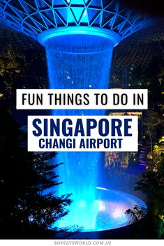 Are you traveling to Singapore? Discover all the amazing things to do in Singapore Changi Airport with kids! This incredible airport has a wealth of family-friendly activities to indulge in during your visit. I what to do in Singapore I Singapore travel I Singapore with kids I things to do with kids in Singapore I world airports I family travel in Singapore I Singapore family travel tips I #Singapore #familytravel Road Trip With Kids, Family Road Trips, Travel With Kids, Family Travel, Singapore Itinerary, Singapore Travel, Singapore Changi Airport, Backpacking Asia, Best Vacations