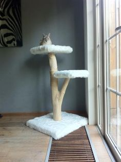 Cat Tree. DIY. Branch. Homemade for Cats.                                                                                                                                                                                 More