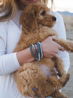 EverWear Bohemian Jewelry Collective • The Asha • 5 Wrap Pearl & Crystal Bracelet // Bedazzled Dog Collar on Golden Doodle Puppy Shop LadyScorpio101.com | @LadyScorpio101 | Photography @Elle_photography._  // Alex Challburg