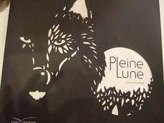 enfantsetart@blogspot.com: Un Livre Magnifique tout en découpes, sublime pour un soir de pleine Lune !