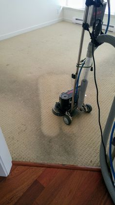 The Best carpet and upholstery service in the Vancouver and surrounding area. Diy Cleaning Products, Cleaning Hacks, Cleaning Services, Diy Carpet Cleaner, Professional Carpet Cleaning, Kitchen Carpet, Best Carpet, Carpet Styles, How To Clean Carpet