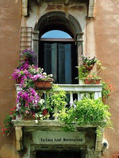 Wall With Fushia Flowers A flower covered balcony in Venice, Italy.A flower covered balcony in Venice, Italy.Peach Wall With Fushia Flowers A flower covered balcony in Venice, Italy.A flower covered balcony in Venice, Italy.