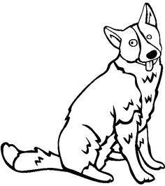 karelian bear dog coloring page