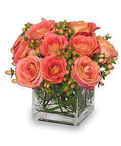 Peach Sorbet – Garden House Floral Studio