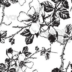 YAY Images - seamless monochrome floral pattern (vector) by milalala