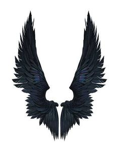 Illustration Demon Wings, Black Wing Plumage Isolated on White Background whit clipping path. Angel Wings Drawing, Angel Wings Art, Wings Wallpaper, Angel Wallpaper, Wings Png, Demon Wings, Wing Tattoo Designs, Black Wings, Tatoo Art