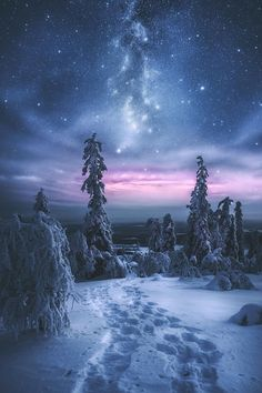 The sky and the snow work together to make something magical