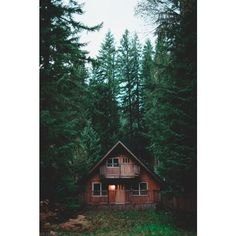 cabin ❤ liked on Polyvore featuring pictures, backgrounds and filler