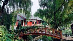 The First Few Weeks in Beijing