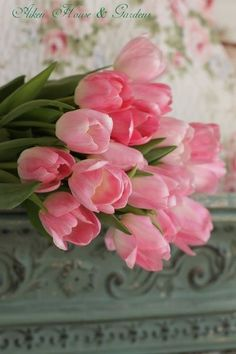 Pink Tulips - clean and elegant flowers for the home.