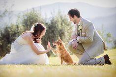 Hi five com o melhor amigo do homem e do casal! #casamento #anel #love #creative #petlove