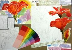 Colour studies, IGCSE Art and Design