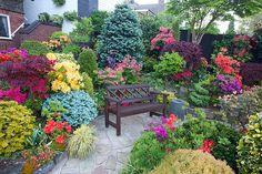 Seat amongst the  azalea flowers by Four Seasons Garden, via Flickr