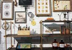 amuneal's cabinet-of-curiosities booth at ICFF 2013