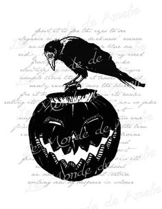 Black Pumpkin halloween raven crow ads scary large by JLeeloo2
