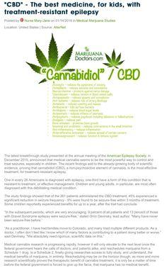 Healthy hemp CBD products CBD oil, hemp oil, cannabis oil, Cannabidiol, hemp, healthy, CBD, Charlotte's Web, oil, medical, natural, relief, seizures, cancer, epilepsy, pain, stress, PTSD, ADD, ADHD, Arthritis, anxiety, beauty, skin care, CBD for pets, medicali, vape juice, vape oil, tinctures, balms, edibles, hemp water, hemp energy drinks, healthy hemp CBD, CBD products, etc