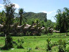 Sulawesi Indonesia