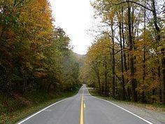 Country Road, Follaje De Otoño, Rural