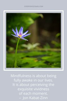 """""""Mindfulness is abou"""