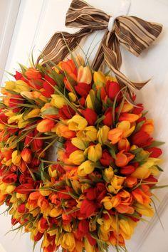 tulipani corona primavera