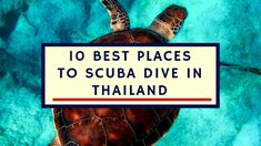 Thailand has hundreds of scuba diving points to choose from. However, amongst the hundreds, we have chosen the 10 Best Places To Scuba Dive in Thailand.