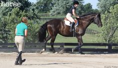 Horsemanship How-to: Master the Two-Point Position~Practicing Two-Point