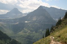 Glacier National Park - Highline Trail