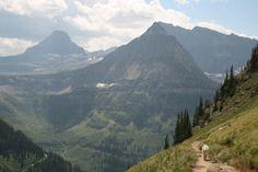 Glacier National Park - Highline Trail