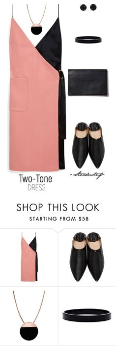 """Two-Tone Dress ~ Take Two"" by stardustnf ❤ liked on Polyvore featuring Mulberry, Acne Studios, Skagen, L. Erickson and Melissa Joy Manning"