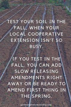 Soil Testing Tip
